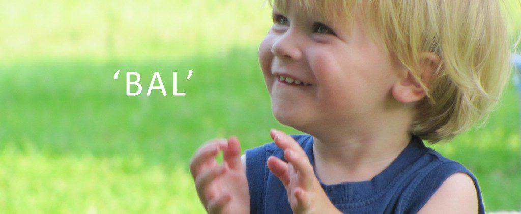 babygebaren gebarentaal